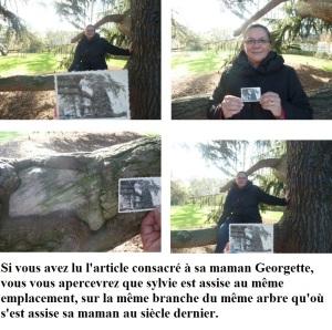 L'arbre de Georgette